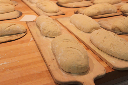 Dough Waiting to be Baked in Le Panyol